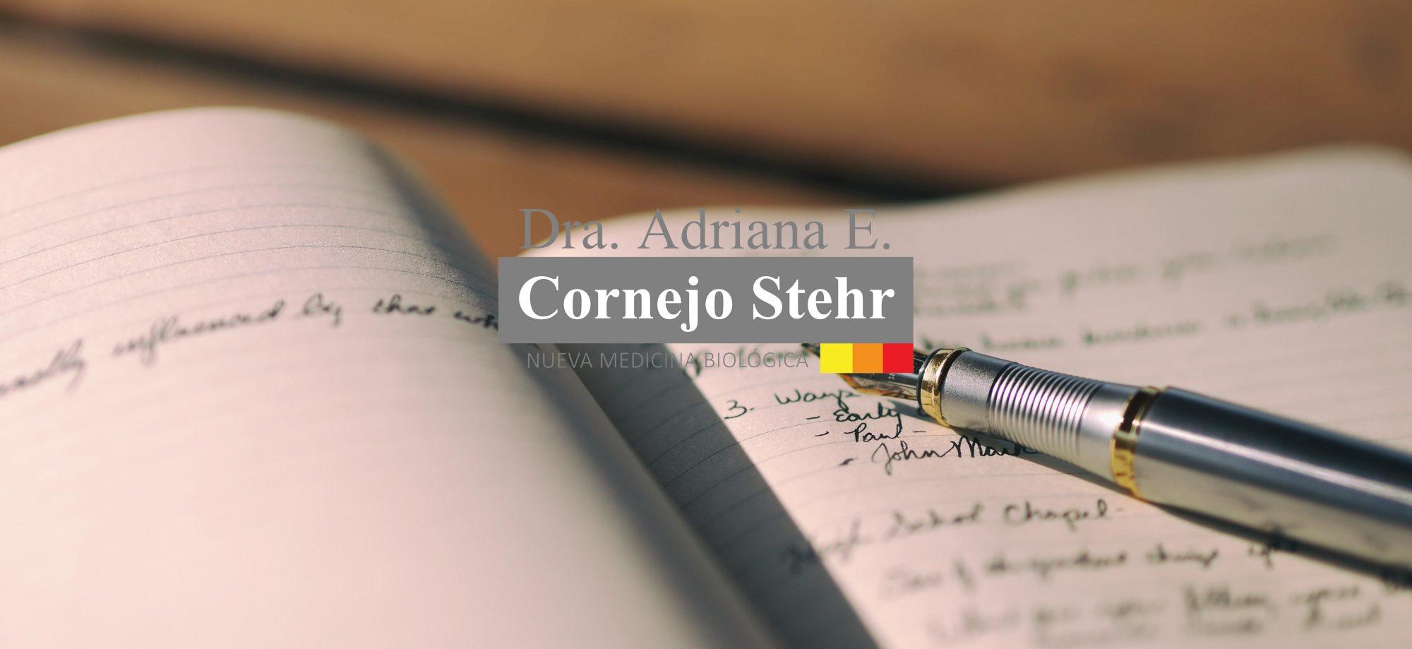 Adriana Cornejo Stehr